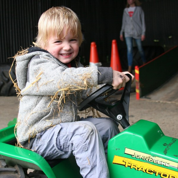 There are plenty of tractors to explore the farm on