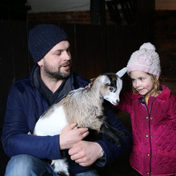 Getting close to animals at Easton Farm Park