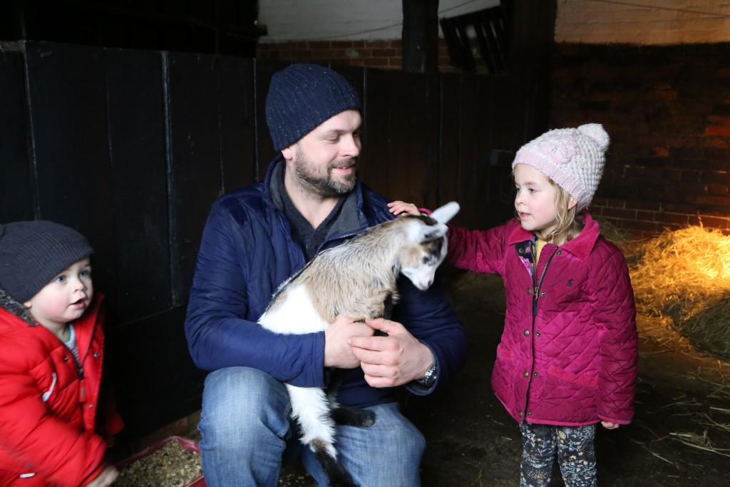 Fun for all the family at Easton Farm Park