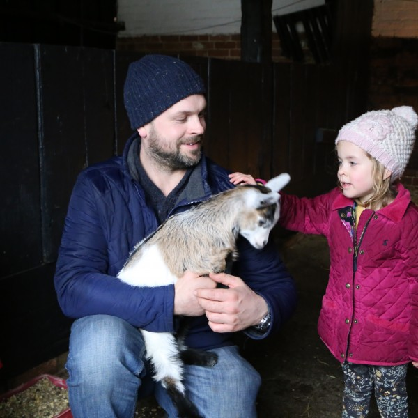 Fun for all the family at Easton Farm Park