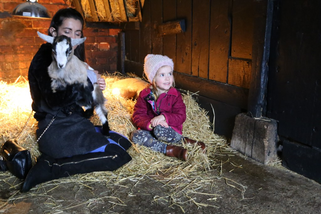 Children's attraction, Easton Farm Park